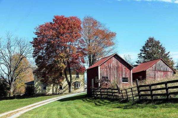 Fredericksburg Spas