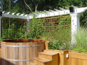 Hot Tub with plants